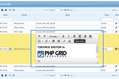 html-editor-tinymce